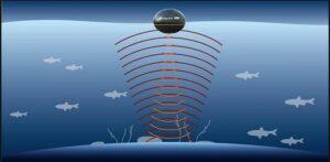 deepersonar-fishing app
